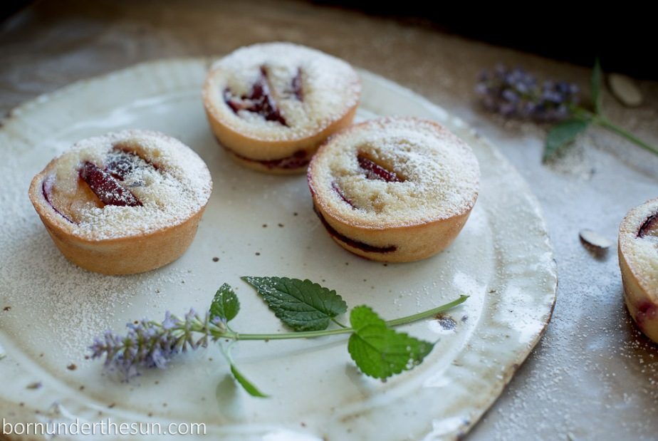 Plum financier